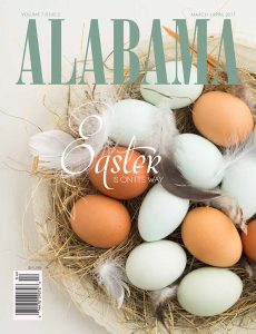 FACEBOOK MA egg cover